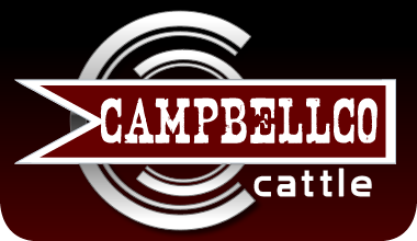 CampbellCoCattle Logo